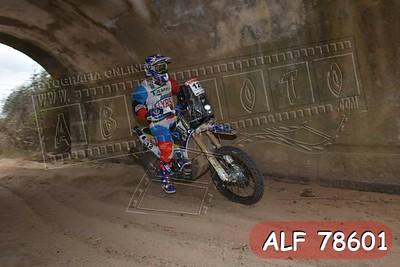 ALF 78601