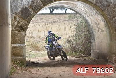 ALF 78602