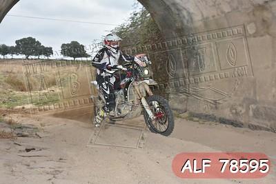 ALF 78595