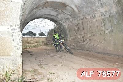 ALF 78577