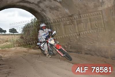 ALF 78581