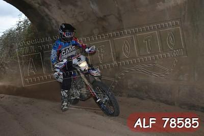 ALF 78585