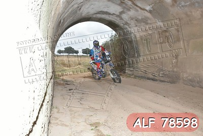 ALF 78598