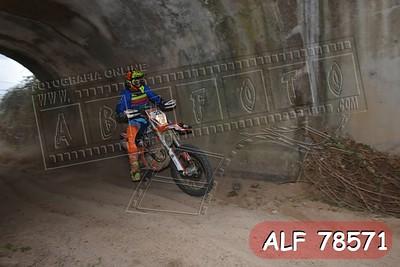 ALF 78571
