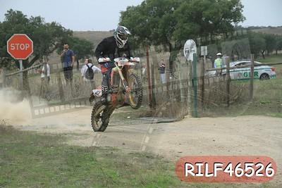 RILF46526