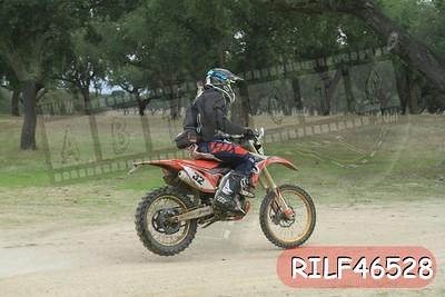 RILF46528