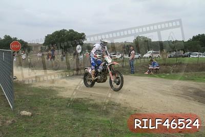 RILF46524