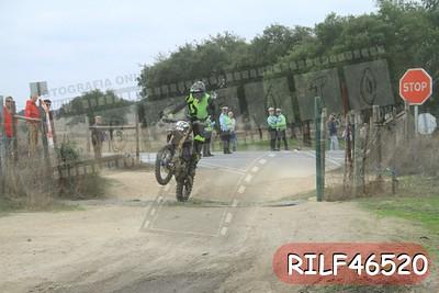RILF46520