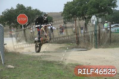 RILF46525