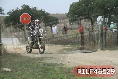 RILF46529
