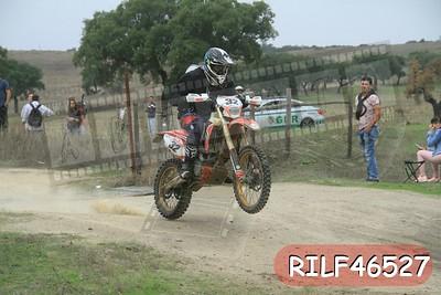 RILF46527