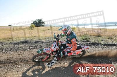 ALF 75010