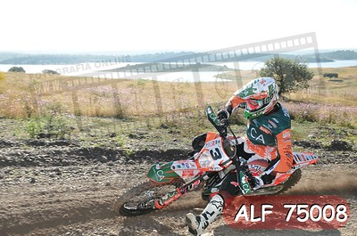 ALF 75008