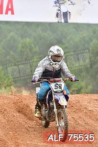 ALF 75535