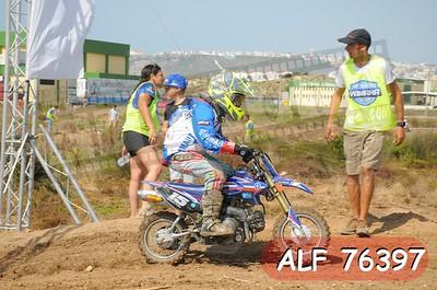 ALF 76397