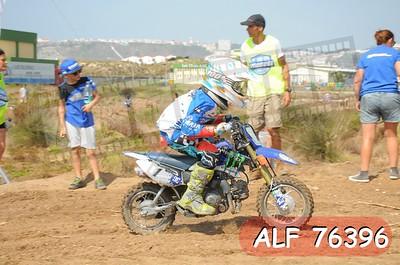 ALF 76396