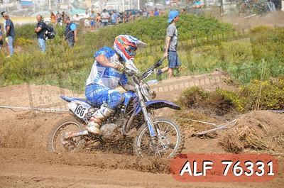 ALF 76331