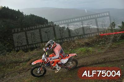 ALF75004
