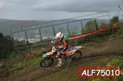 ALF75010