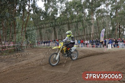 JFRV390065