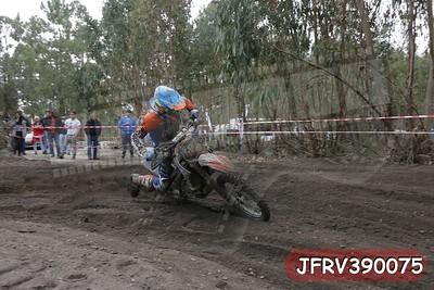 JFRV390075
