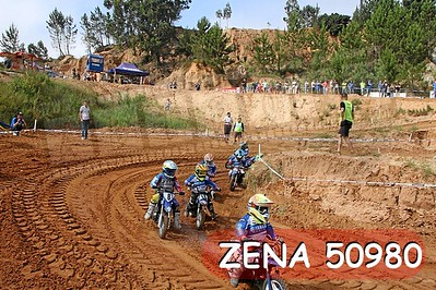 ZENA 50980