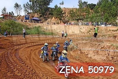 ZENA 50979