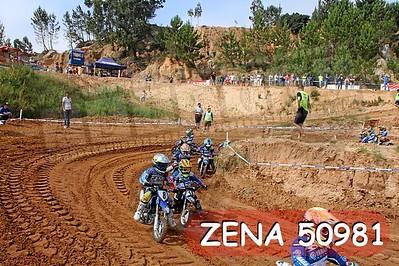 ZENA 50981