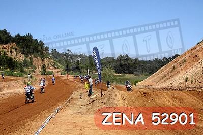 ZENA 52901