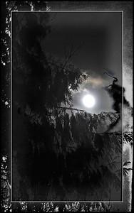 #3 Solstice Moon.