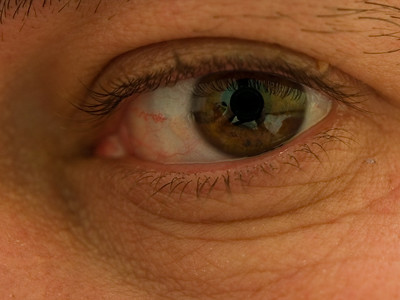 NZDI - Eye See