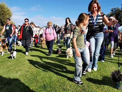 Pets parade  Local SPCA fund raising walk.