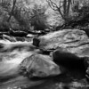 """North Carolina Stream""<br /> By Eric Sorensen<br /> Large Monochrome<br /> Score: 12 May 2009"