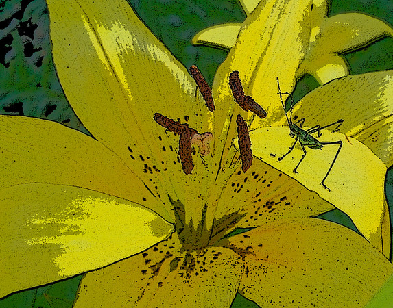 Daylily Visitor<br /> Maker: Glenda Collums<br /> Category: Non-Traditional<br /> Score: 11 July 2009