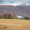 Mountain Farm in Winter by Wayne Tabor<br /> Score: 12 January 2009