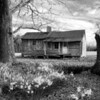 Old Home Place<br /> by Wayne Tabor<br /> Monochrome<br /> Score:  11