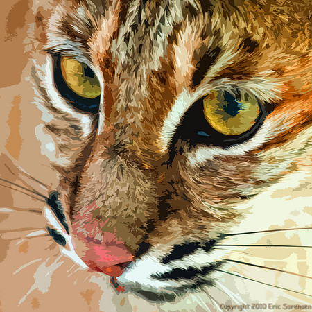 """""""Paint-by-numbers Kitty""""<br /> by Eric Sorensen<br /> Non-Traditional<br /> Score:  11"""
