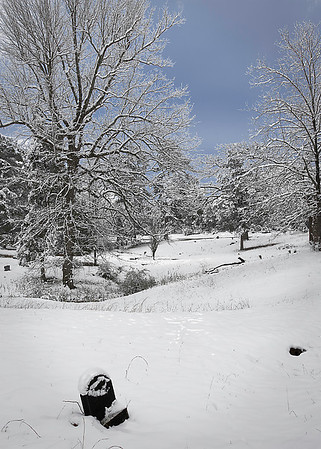 Scotsville Snow Scene 2010<br /> Maker:  Wilfred Smith<br /> Catagory.  Open Color<br /> Scorre:12