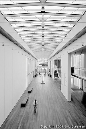 """Chicago Institvte of Art""<br /> By Eric Sorensen<br /> Large Monochrome<br /> Score - 11"