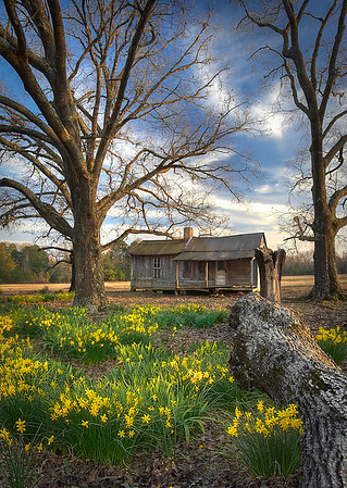 Old Homeplace off Colquitt Rd.<br /> Maker: Wilfred Smith<br /> Catagory:  Large Color<br /> Score:  13