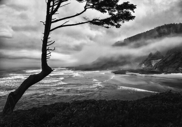 Maker: Wayne Tabor<br /> Title:  Clouds on the Beach<br /> Category:  Black & White<br /> Score:  13