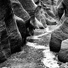 Maker:  Brian M. Buckner<br /> Title:  Willis Creek<br /> Category:  B&W<br /> Score:  12