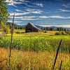 Maker:  Wayne Tabor<br /> Title:  Barn and Reeds<br /> Category:  Pictorial<br /> Score:  13