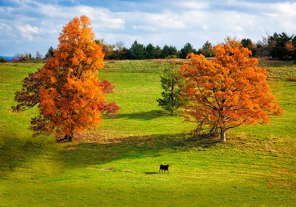 Maker:  Wayne Tabor<br /> Title:  Autumn Farm<br /> Category:  Pictorial<br /> Score:  12