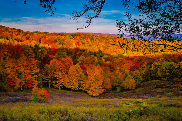 Maker:  Roger Lockridge<br /> Title:  Fall Glory in West Virginia<br /> Category:  Landscape/Travel<br /> Score:  12