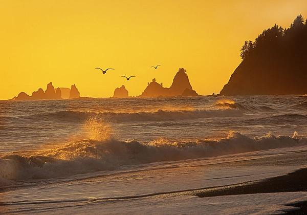 Maker:  Wayne Tabor<br /> Title:  Rialto Beech Sunset<br /> Category:  Landscape/Travel<br /> Score:  13