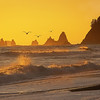 Maker:  Wayne Tabor<br /> Title:  Rialto Beech Sunset<br /> Category:  Landscape/Travel<br /> Score:  13