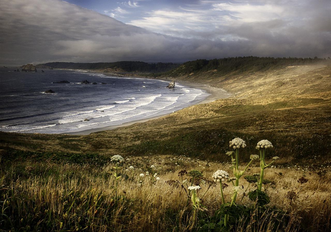 Maker:  Wayne Tabor Title:  Evening on the Cape Category:  Landscape/Travel Score:  14