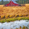 Maker:  Wayne Tabor<br /> Title:  Red Barn on Pond<br /> Category:  Pictorial<br /> Score:  13