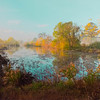 Maker:  Dale Robertson<br /> Title:  Autumn Pond<br /> Category:  Landscape/Travel<br /> Score:  13